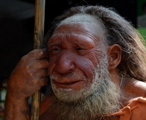 A reconstruction of a Neanderthal is standing a the Neandertal Museum. The Neandertal Museum, which is located between Mettmann and Dusseldorf, North Rhine-Westphalia, contains the pre- and early history of human beings and of the Neanderthals, who were named after the place of discovery of the fossil Neandertal 1. Picture from 23 August 2013.